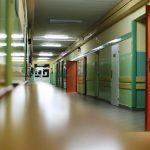 Actividades educativas para una jornada de puertas abiertas